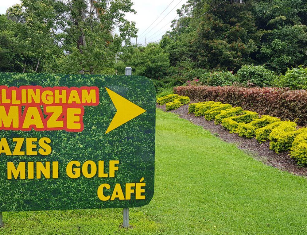 Bellingham maze
